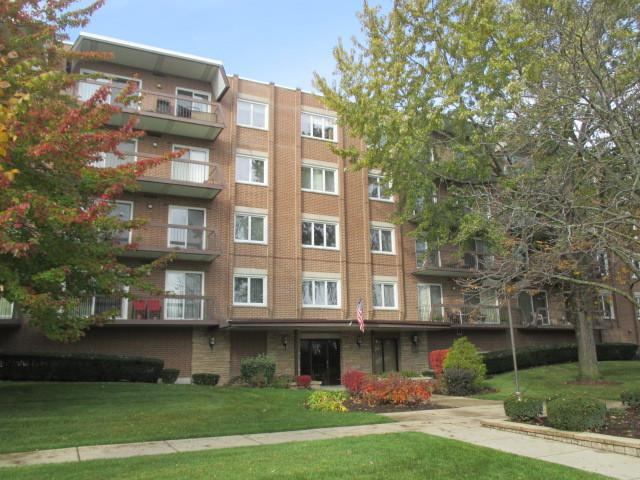 9500 N Washington Street #302, Niles, IL 60714 (MLS #10312063) :: Helen Oliveri Real Estate