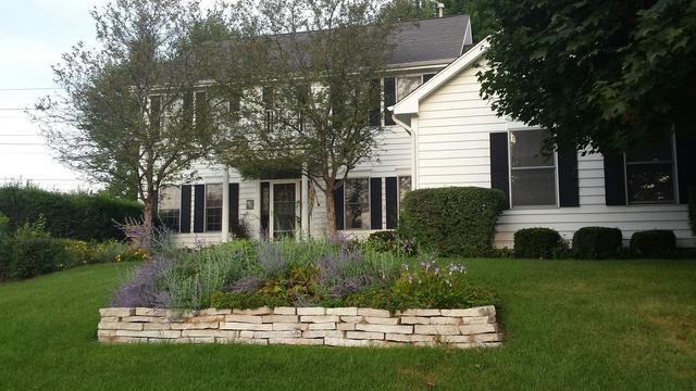 7205 Owl Way, Cary, IL 60013 (MLS #10312229) :: T2K Properties