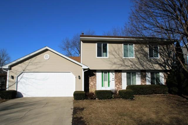 700 Autumn Drive, Roselle, IL 60172 (MLS #10312240) :: The Perotti Group   Compass Real Estate