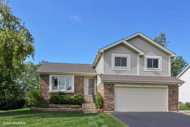 1177 Tracie Drive, Lake Zurich, IL 60047 (MLS #10312288) :: Helen Oliveri Real Estate