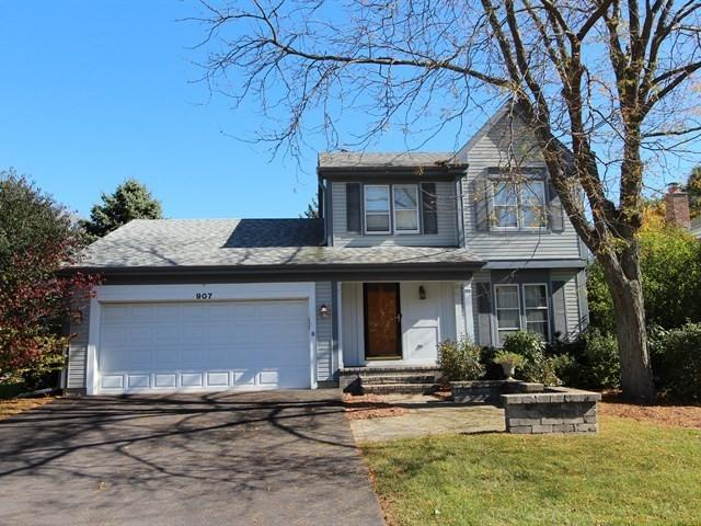 907 Holly Circle, Lake Zurich, IL 60047 (MLS #10312309) :: Helen Oliveri Real Estate