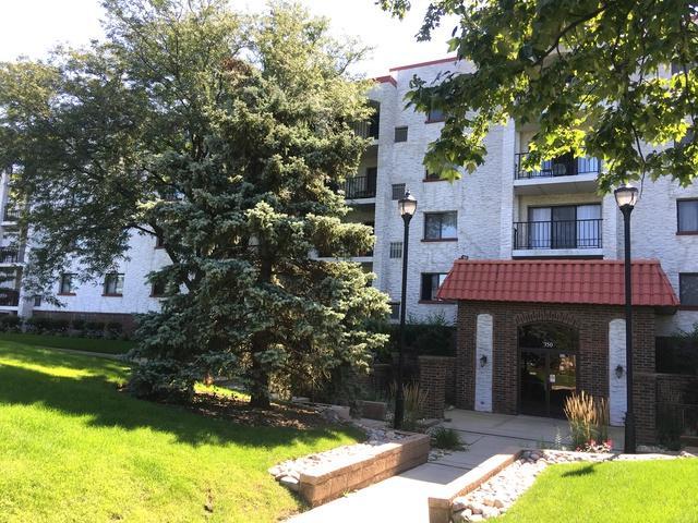 350 Plum Creek Drive #406, Wheeling, IL 60090 (MLS #10312358) :: Helen Oliveri Real Estate