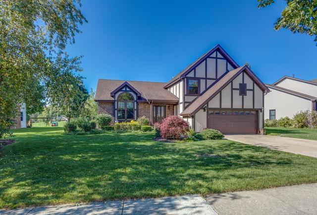 360 Stone Avenue, Lake Zurich, IL 60047 (MLS #10312373) :: Helen Oliveri Real Estate