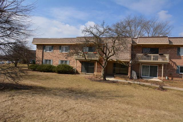 6S110 Park Meadow Drive 9A, Naperville, IL 60540 (MLS #10312742) :: Baz Realty Network   Keller Williams Preferred Realty