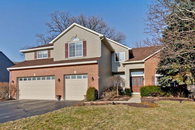 1730 Somerset Lane, Mundelein, IL 60060 (MLS #10313055) :: Helen Oliveri Real Estate