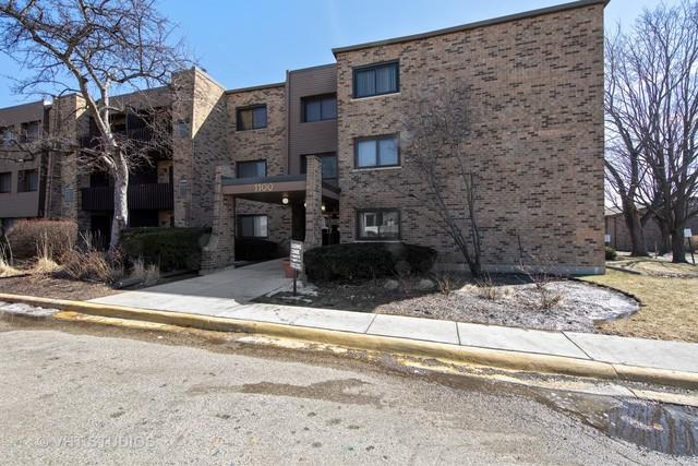 1100 E Randville Drive #109, Palatine, IL 60074 (MLS #10313281) :: The Dena Furlow Team - Keller Williams Realty
