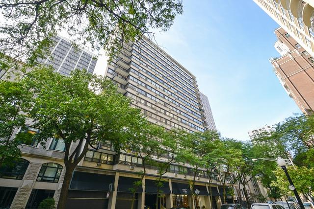 33 E Cedar Street 11A, Chicago, IL 60611 (MLS #10313347) :: Property Consultants Realty