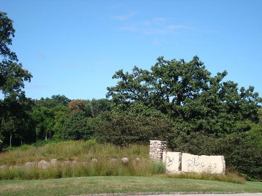 Lot #25 W Longwood Drive, Woodstock, IL 60098 (MLS #10313442) :: Helen Oliveri Real Estate
