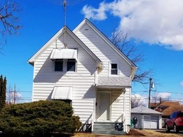 1016 Cora Street, Joliet, IL 60435 (MLS #10313553) :: HomesForSale123.com