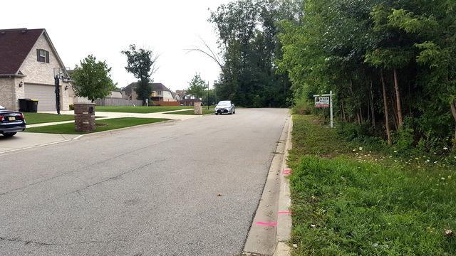 LOT 15 Pine Lane, Wood Dale, IL 60191 (MLS #10313605) :: Janet Jurich Realty Group