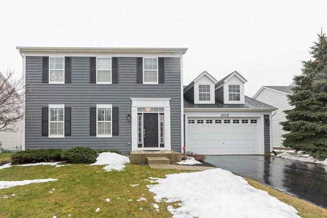 3015 Cookson Avenue, Elgin, IL 60124 (MLS #10313614) :: Baz Realty Network | Keller Williams Preferred Realty