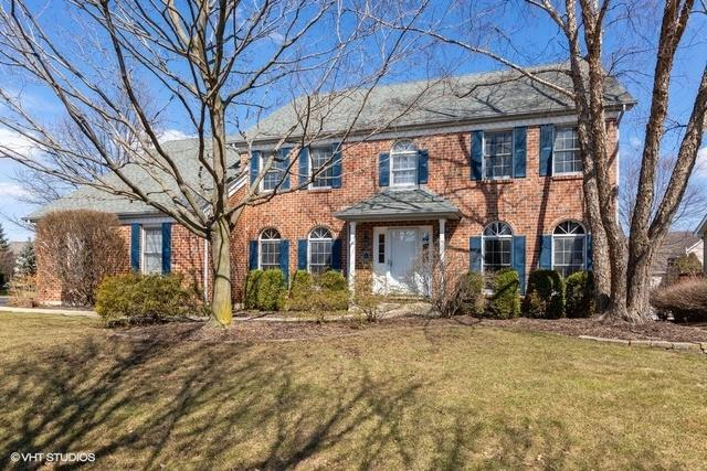 2507 Indian Grass Court, Naperville, IL 60564 (MLS #10313743) :: Baz Realty Network | Keller Williams Preferred Realty