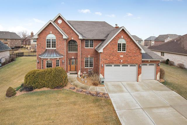 16555 Christopher Drive, Lemont, IL 60439 (MLS #10313902) :: The Dena Furlow Team - Keller Williams Realty