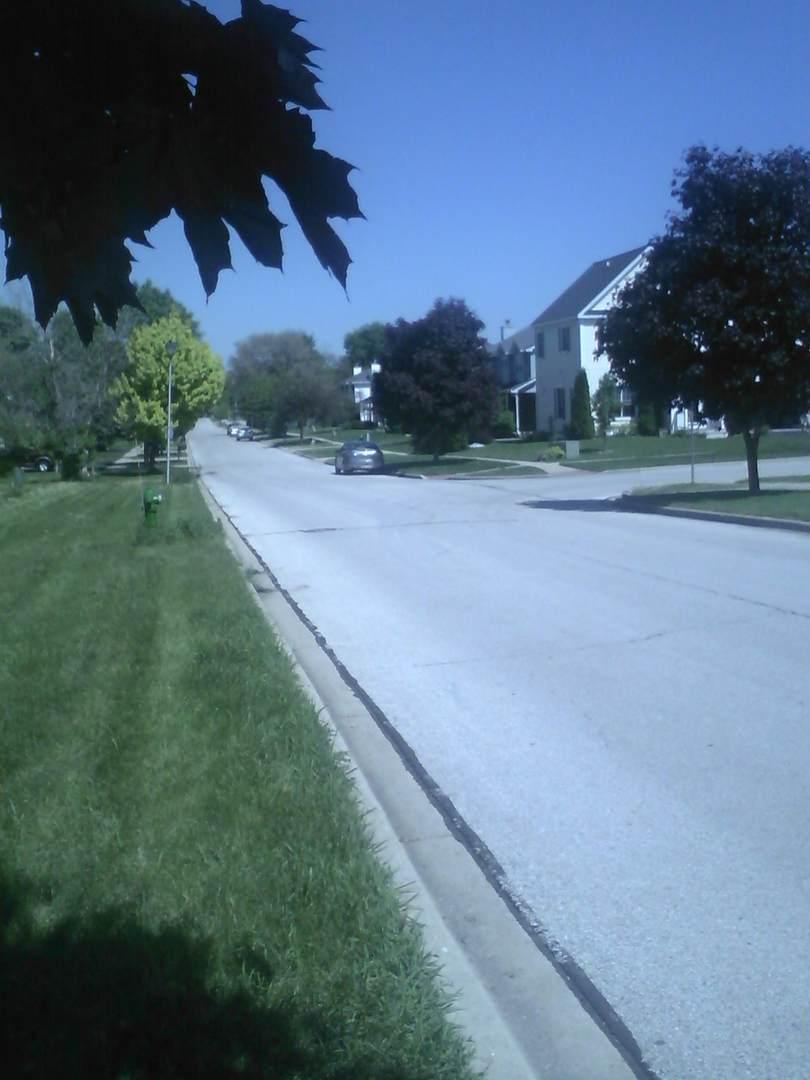 1007 1st Street, Batavia, IL 60510 (MLS #10314539) :: The Dena Furlow Team - Keller Williams Realty
