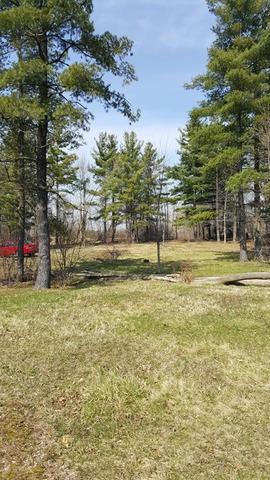 1008 W Nippersink Road, Round Lake, IL 60073 (MLS #10314900) :: Ryan Dallas Real Estate