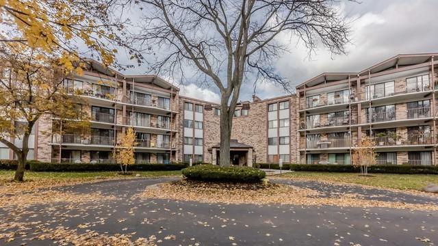 250 W Parliament Place U316, Mount Prospect, IL 60056 (MLS #10315071) :: T2K Properties