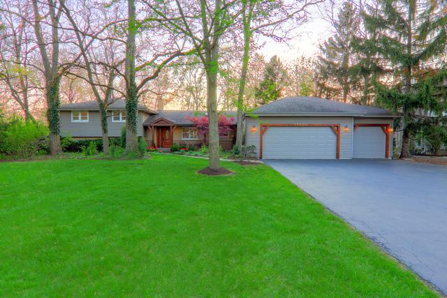 9S630 Lorraine Drive, Willowbrook, IL 60527 (MLS #10315416) :: Helen Oliveri Real Estate