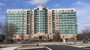 6420 Double Eagle Drive #907, Woodridge, IL 60517 (MLS #10315490) :: Helen Oliveri Real Estate