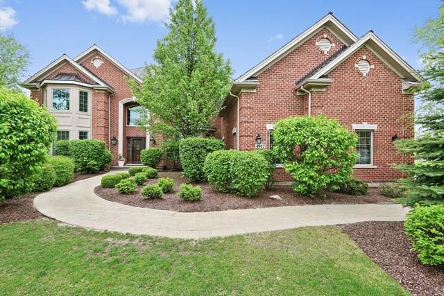 4917 Sage Lane, Long Grove, IL 60047 (MLS #10315532) :: Baz Realty Network   Keller Williams Preferred Realty