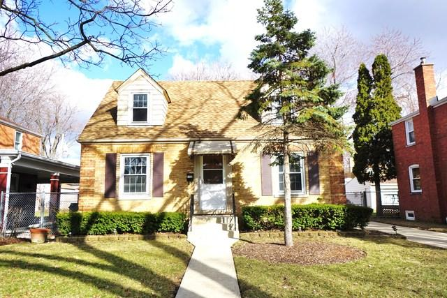 2009 S Washington Avenue, Park Ridge, IL 60068 (MLS #10315709) :: T2K Properties