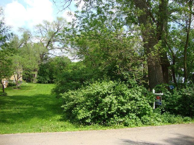 Lot 3 Roosevelt Street, Woodstock, IL 60098 (MLS #10316037) :: Lewke Partners