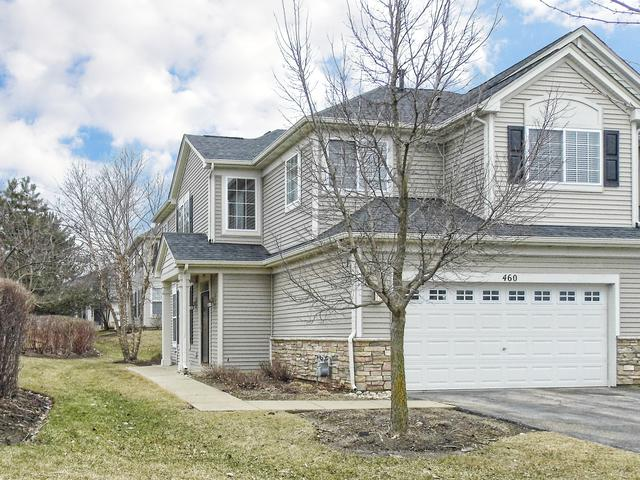460 Telluride Drive, Gilberts, IL 60136 (MLS #10316052) :: Helen Oliveri Real Estate