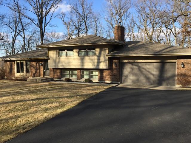 4N621 Deerslayer Drive, Elburn, IL 60119 (MLS #10316443) :: HomesForSale123.com