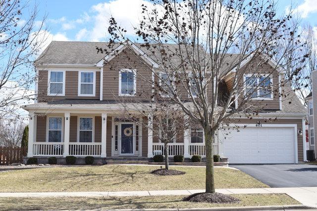 601 Haversham Avenue, Elgin, IL 60124 (MLS #10316501) :: HomesForSale123.com
