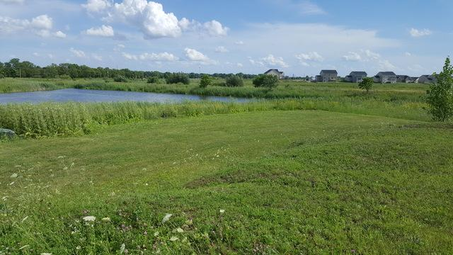 Lot 14 Rock Court, Plainfield, IL 60586 (MLS #10317254) :: Baz Realty Network | Keller Williams Preferred Realty