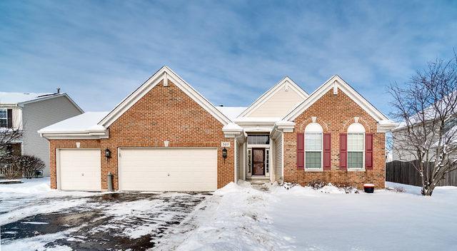 509 Chestnut Drive, Oswego, IL 60543 (MLS #10317666) :: Baz Realty Network | Keller Williams Preferred Realty