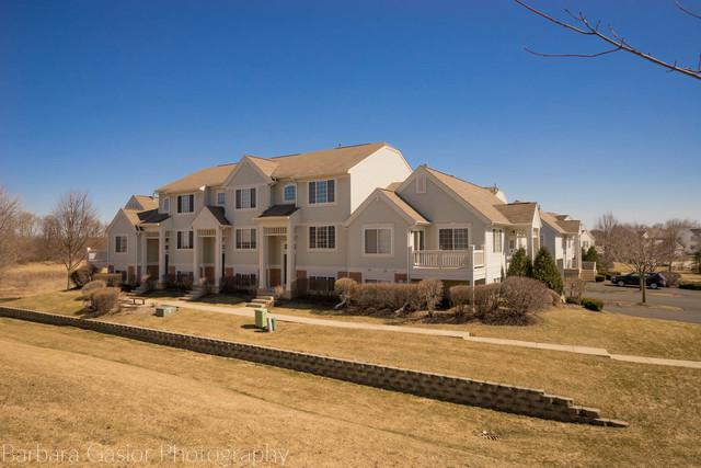 1576 New Haven Drive, Cary, IL 60013 (MLS #10318425) :: Lewke Partners