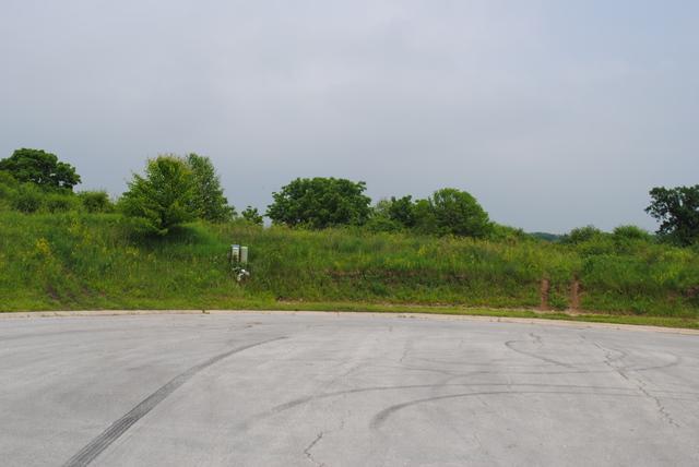 217 Crozier Drive, Grayslake, IL 60030 (MLS #10318508) :: Baz Realty Network | Keller Williams Preferred Realty