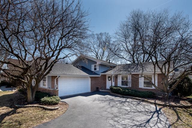 1508 77th Street, Naperville, IL 60565 (MLS #10318651) :: Ani Real Estate