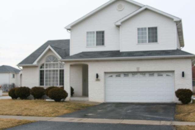 694 Cassandra Lane, University Park, IL 60484 (MLS #10318801) :: Ani Real Estate