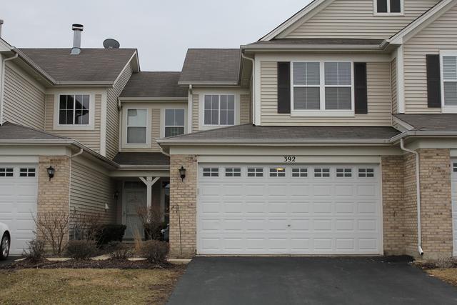 392 Chesapeake Lane, Oswego, IL 60543 (MLS #10318804) :: Ani Real Estate
