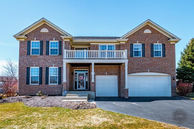 2950 Shamrock Circle, Elgin, IL 60124 (MLS #10318855) :: Helen Oliveri Real Estate