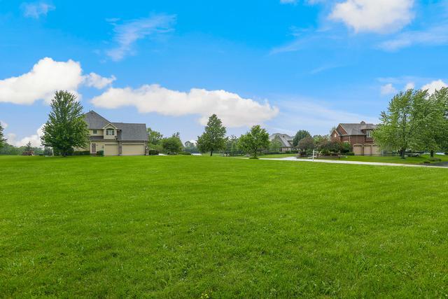 9411 N Muirfield Drive N, Lakewood, IL 60014 (MLS #10319069) :: Property Consultants Realty