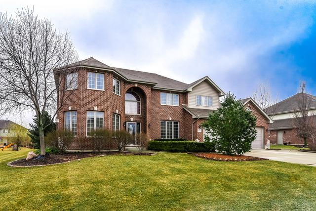 22981 Lakeview Estates Boulevard, Frankfort, IL 60423 (MLS #10319151) :: BNRealty