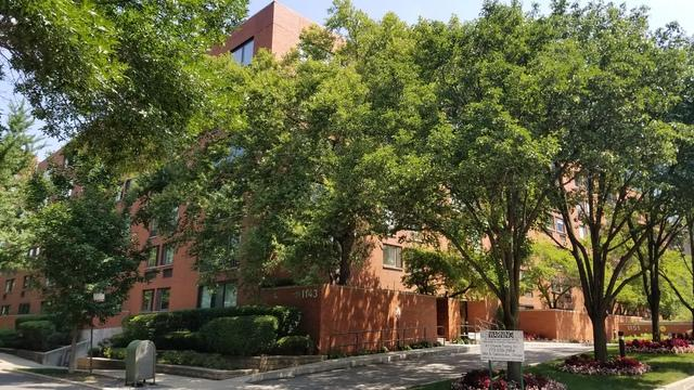 1143 S Plymouth Court #201, Chicago, IL 60605 (MLS #10319351) :: Century 21 Affiliated