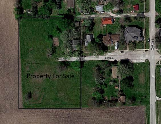 206 South Street, Emington, IL 60934 (MLS #10319523) :: Property Consultants Realty