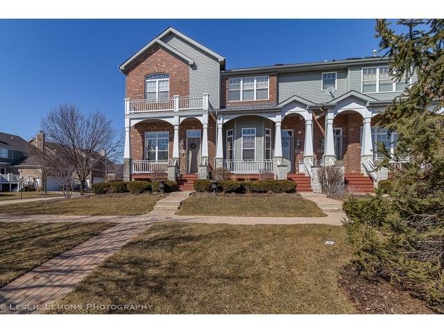 1135 Ironwood Lane, Lisle, IL 60532 (MLS #10319635) :: Baz Realty Network   Keller Williams Preferred Realty