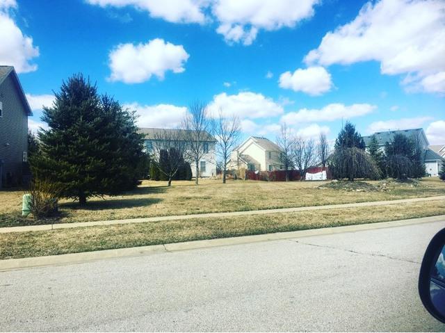 801 Allison Drive, TOLONO, IL 61880 (MLS #10320282) :: Ryan Dallas Real Estate