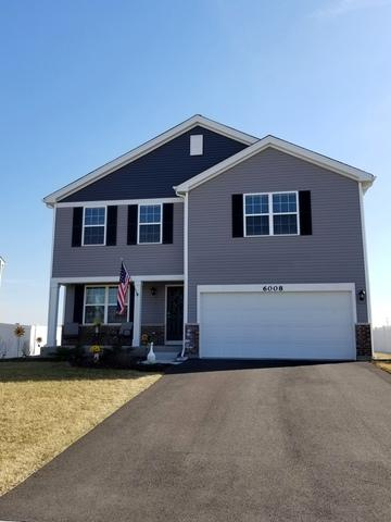 6008 Winterhaven Drive, Joliet, IL 60431 (MLS #10321155) :: Helen Oliveri Real Estate