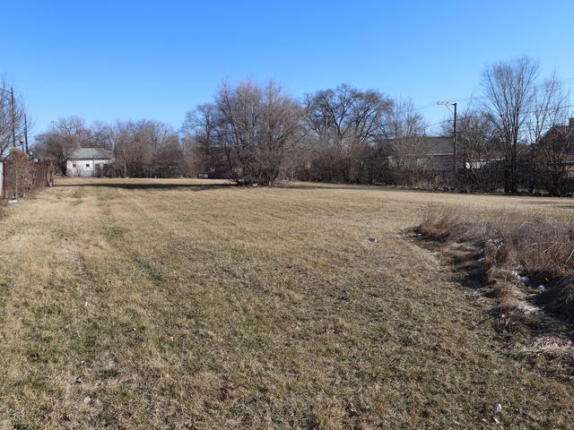 10153 S Michigan Avenue, Chicago, IL 60628 (MLS #10321562) :: Ani Real Estate