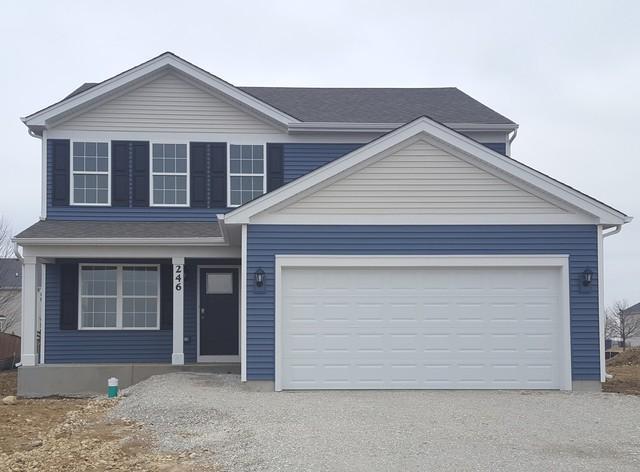 246 Liszka Lane, Oswego, IL 60543 (MLS #10322310) :: Helen Oliveri Real Estate