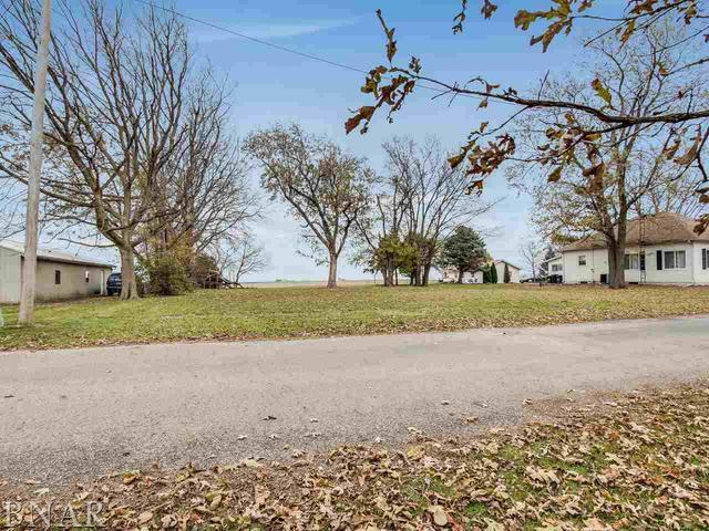 326 Indiana Street, Panola, IL 61738 (MLS #10322355) :: Baz Network | Keller Williams Elite