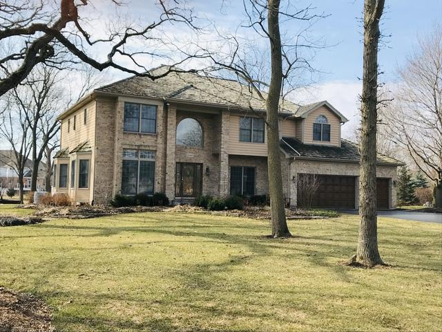 28449 Heritage Oaks Road, Barrington, IL 60010 (MLS #10322652) :: Helen Oliveri Real Estate