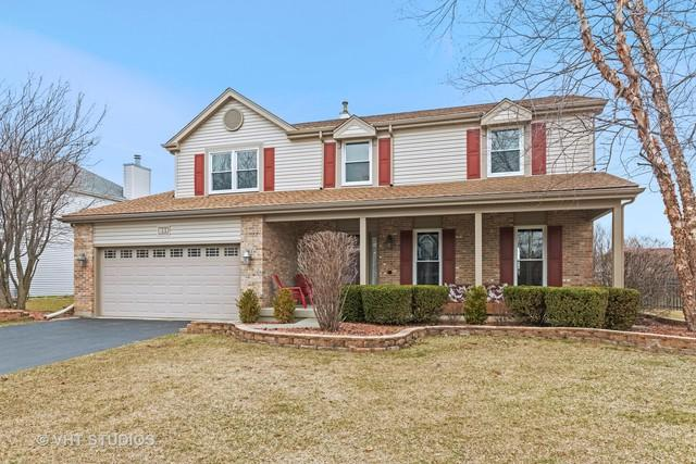 811 Providence Drive, Algonquin, IL 60102 (MLS #10324698) :: Domain Realty