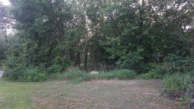 Acreage Serpentine Drive, Momence, IL 60954 (MLS #10324853) :: Leigh Marcus | @properties