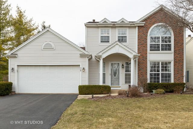 2 Raintree Court, Cary, IL 60013 (MLS #10325017) :: Helen Oliveri Real Estate